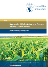"""Bioenergy - chances and limits"""